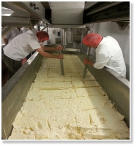 cheese making in Hartington