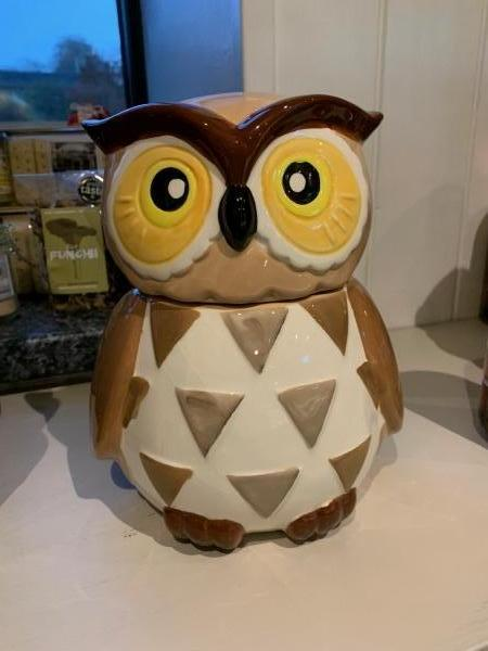 <p>Barney the Barn Owl is a fabulous reusable biscuit barrel that comes with 200g of chocolate chip cookies</p>